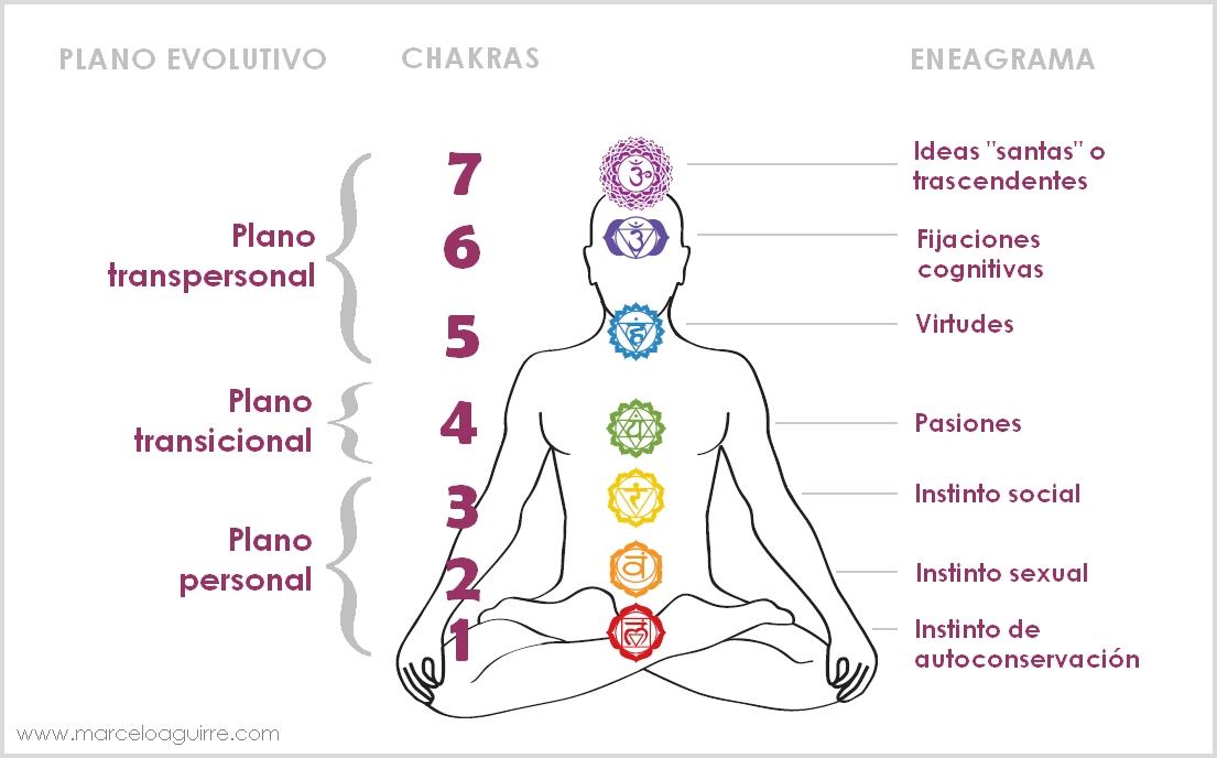 Descripción de los 7 Chakras y sus funciones