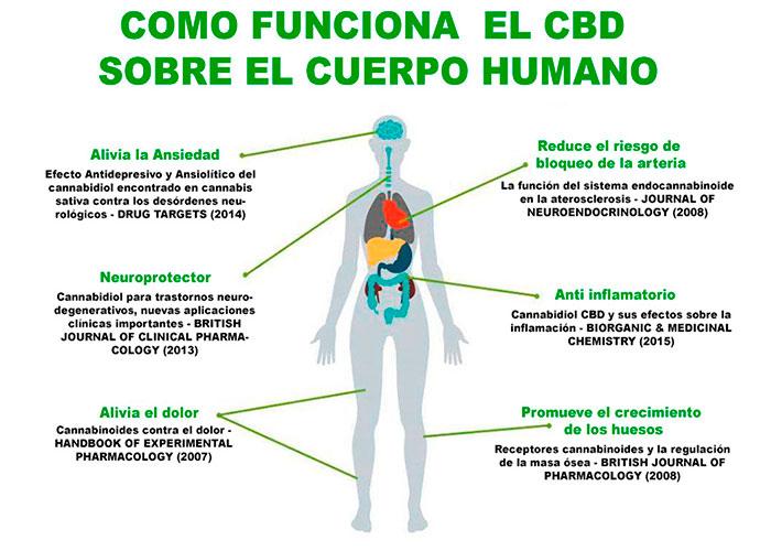 Beneficios del CBD