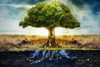 El Árbol de la Vida celta