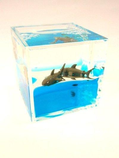Pisapapeles Tiburón cuadrado